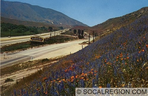 Postcard of Gorman from the late 1950's. Taken from the southern end of town.